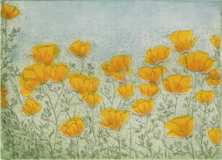 Field of Poppies_1
